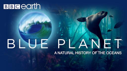 Planet Earth | Netflix