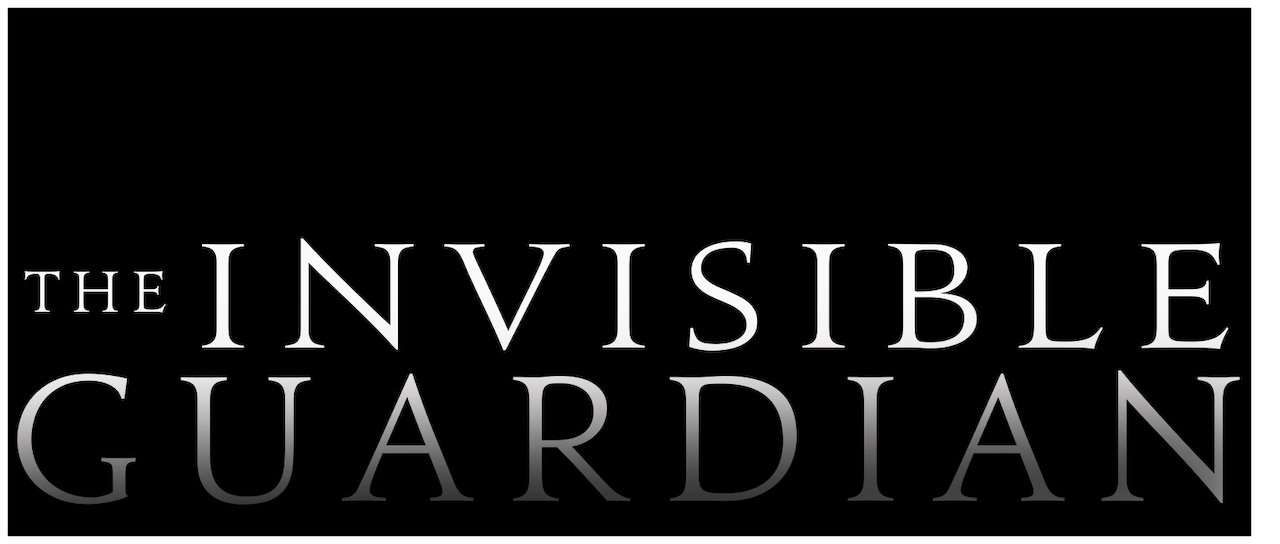 The Invisible Guardian Netflix
