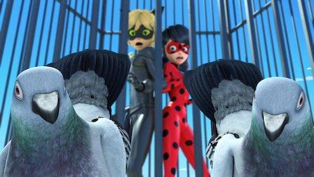 Miraculous: Tales of Ladybug & Cat Noir   Netflix