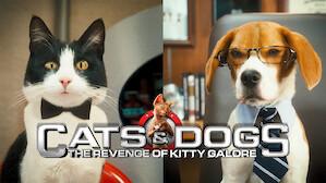 Best Comedies Netflix Official Site